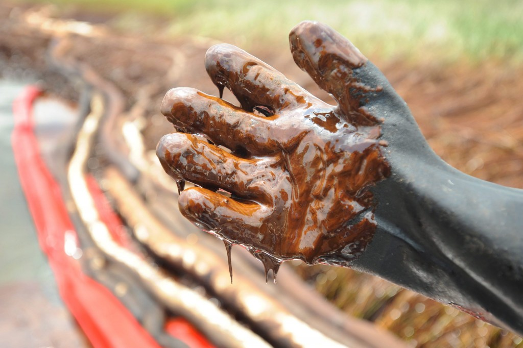epa02213525 Airboat operator Michael Fabian's glove is dripping with thick crude oil from the BP Deepwater Horizon oil spill in the Bay Jimmy marsh section of Barataria Bay near Port Sulpher, Louisiana, USA, 20 June 2010. Plaquemines Parish officials are using portable vacuums to slowly collect the oil at their own expense. The BP oil spill is the largest in US history and continues to threaten wildlife, the ecosystem and the economy of the Gulf Coast as BP and government officials attempt to stop the flow and remove what has already been released. EPA/ERIK S. LESSER
